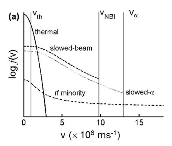 Schematic particle distribution function with fusion product ($\alpha$) with speed $v_\alpha$, neutral beam injection energy $v_{NBI}$ and thermal speed $v_{th}$